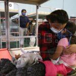 La cifra de niños inmigrantes en tutela de EE.UU. cae un 45% en menos de un mes